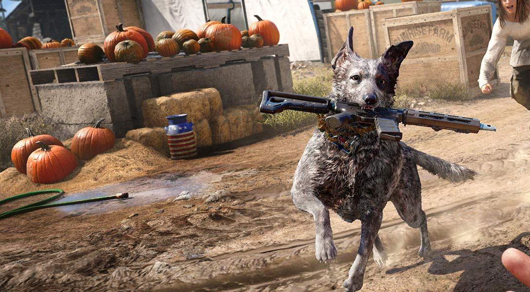8 Dinge, die wir über den Hund Boomer und die weitere Tier- und Pflanzenwelt von Far Cry 5 herausgefunden haben