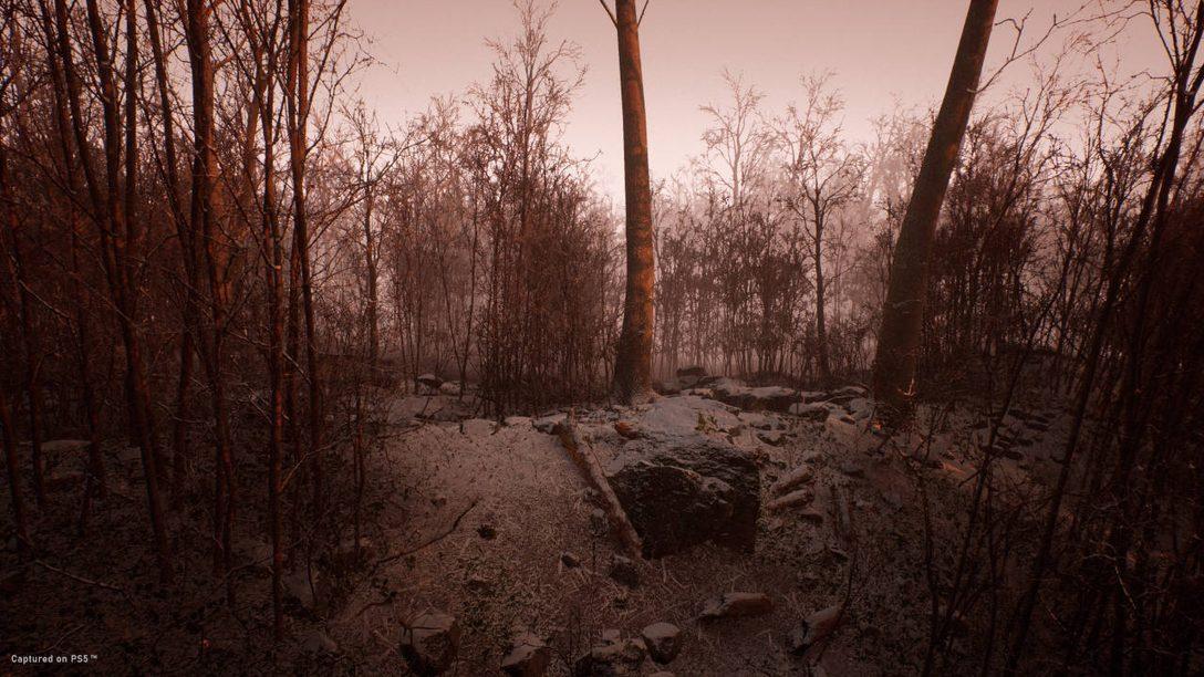 Abandoned: Ein Survival-Sim für PS5